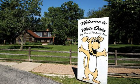 Community Events in Wood Dale IL