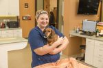 Caring for Our Pets