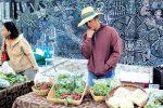 A Food Revolution in Rio Grande Valley