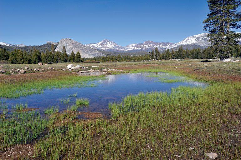 Gateway to Yosemite