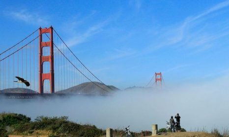 Must Sees in San Francisco